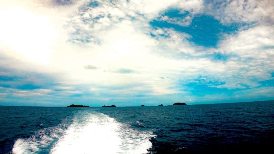 GBR🇦🇺に浮かぶ無人島でウミガメと泳ぐ🐠